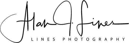 Alan Lines, Lines Photography, Portraits, Weddings, Events, Places, Hove, East Sussex Logo